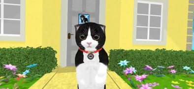 Konrad the Kitten is ready for all your love in VR