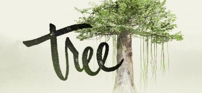 "HTC VIVE and New Reality Launch ""Tree"" on VIVEPORT to Fight Deforestation and Climate Change"